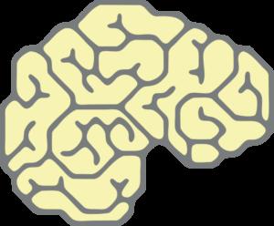 zelfbewustzijn-module-2